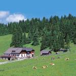 Dreiwiesenhütte